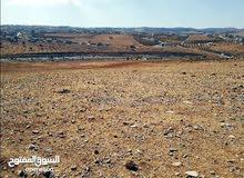 ارض للبيع من اراضي اربد بالقرب من جامعة اربد الاهلية