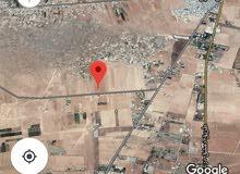 أرض مساحة 8.5دونم في ريف دمشق/الكسوة /عين البيضة