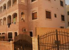 Al Sakaneyeh (9) neighborhood Aqaba city -  sqm apartment for rent