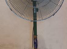 Buraq pedestal fan