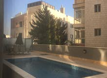 furnished apartment for rent in jabal amman