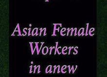 Required asian  female Workers in anew salon