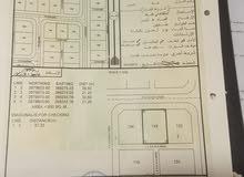 ارض للبيع في البريمي  مع الجامعه البريمي