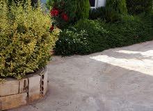 شقة للايجار في منطقة  الدامور ، مواجهة للبحر ، طابق ارضي ، 1 غرفة نوم ، 1 مطبخ ، 1 حمام + موقف خاص