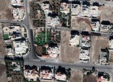 قطعة ارض مميزه للبيع في الظهير على شارعين ذات اطلاله