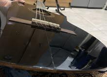 guitar Córdoba C5BEK