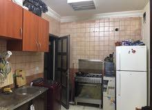 شقة كبيرة غرفتين وصالة وحمام ومطبخ وطرقة وحوش للايجار بعين خالد