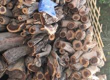 للبيع حطب سمر على حسب التريب