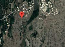 ارض زراعيه  للبيع في ريف دمشق قرية المقروصه