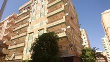 شقة بالرووف 160 متر / شارع 6