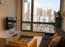 Luxury Hotel Apartment For Rent