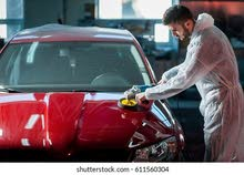 car polisher and cleaner