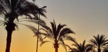 شقه للبيع 120م مطله على البحر مباشر اجمل واهم موقع في مدينة صور جادة نبيه بري