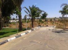 مزرعه صغيره للايجار اليومي للعائلات باللطفه وادي الربيع