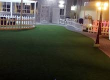 استراحة الضيافة للإيجار اليومي في فنجاء ولاية بدبد