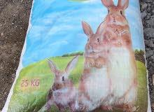 علف ارانب
