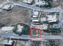 وادي موسى ( البتراء ) حي عاصم على الشارع الرئيسي وسط البلد تصبح للاستثمار السكني
