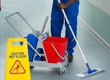 خدمات تنظيف  خبرة 20 سنة بالتنظيف ومعالجة جميع مشاكل السجاد والبلاط باسعار خاصة