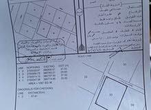 للبيع ارض صناعية زاويه البريمي محضه نيابة الروضه مساحتها 1087 م2