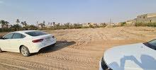 قطع للبيع في شط العرب الجزيرة شارع الصقر قرب مدرسة ام ايمن