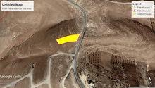 ارض للبيع شفا بدران زينات الربوع مساحة 6دونمات في اعلى قمهaaa