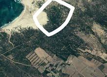قطعة ارض علي البحر