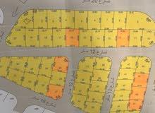 البنيات اسكان الامانة مشروع إفراز جديد مساحات مختلفة منطقة فلل 330م واكثر