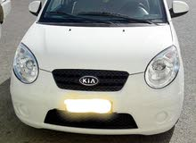 Renting Kia cars, Picanto 2008 for rent in Amman city