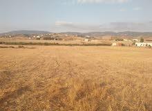 بيع أرض بإقليم تطوان تبلغ مساحتها1138م ب75 در صالحة للسكن وكذا لإقامة مشاريع