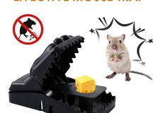 مصيدة فئران عجيبة وسهلة الاستخدام