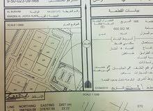 ( البريمي) سكنيه/ الخضراء E قريب المنازل وشارع