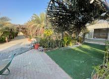 استراحة ممتازة للبيع في عجمان مصفوط خلف نادي مصفوط الرياضي حوض 8 تملك مواطن وخليجي فقط