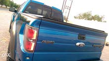 Blue Ford F-150 2010 for sale