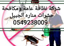 شركة نظافة ومكافحة حشرات 0549238009