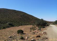 أرض فلاحية محفظة للبيع مساحتها 21 هكتار