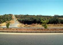 قطعة أرض للبيــع في منطقة اللبن الجديدة على طريق المطار حوض ابو دبوس