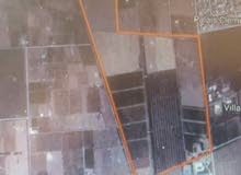 52 hectares for sale in Marrakech