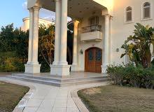 قصر مول العرب