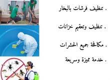 تنظف المنازل