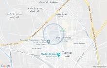 شقه للايجار اداري بطنطا شارع عبد السلام عواره