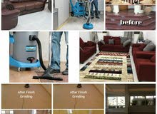 Professionally Cleaning & Pest Control Service