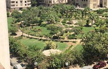 More than 5 apartment for sale - Nasr City