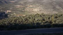 أرض في منطقة فرون الجنوبية للبيع مساحة الأرض 5000م2 السعر 350000$