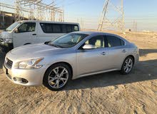 Gasoline Fuel/Power   Nissan Maxima 2013