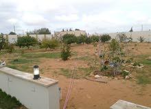 استراحة ربع هكتار بتاجوراء الباعيش بالقرب من مزارع الورد