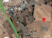 أرض للبيع الطنيب السكة الغربي خلف جامعة الاسراء مشروع الأمانة بسعر مغري 33الف
