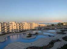 شقة للإيجار شرم الشيخ