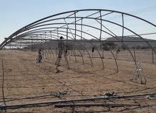 بيوت زراعية جرين هاوس مستعمل اردني