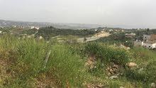 للبيع في السلط كفرهودا مطله على جبال فلسطين مرتفعه مساحه دنمين