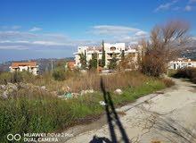 ارض للبيع في جبل لبنان - الشبانية رائعة وبسعر مخفض لا يتكرر